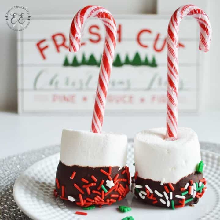 Marshmallow Pops for Hot Chocolate