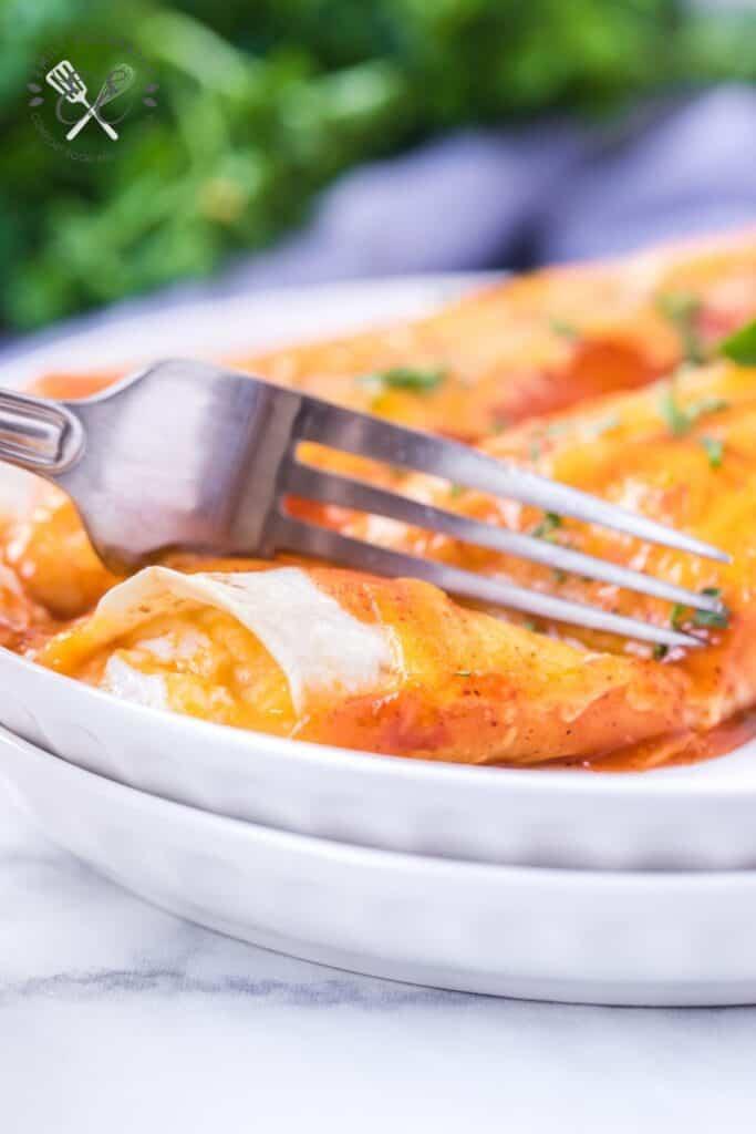 Cheese Enchilada with Enchilada Sauce